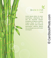 Background with green bamboo - Vector illustration of...