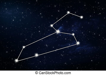 leo horoscope star sign with night sky