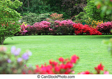 Beautiful garden with flowering shrubs, a neat manicured...