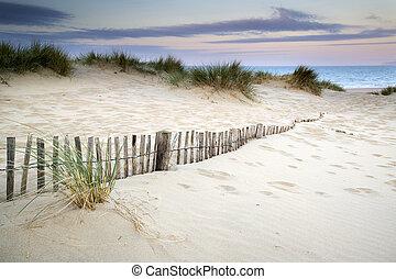 dűnék, napkelte, homok, füves, táj