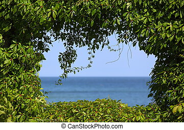 The Green Window - View to the sea covered by a hedge around