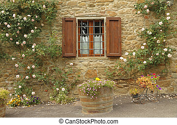 idyllic window with roses,borgo Volpaia, Tuscany, Italy