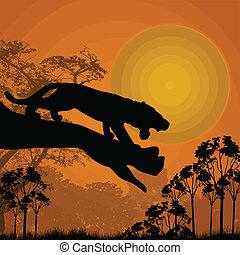 Tiger on a tree - Silhouette view of tiger on a tree at...