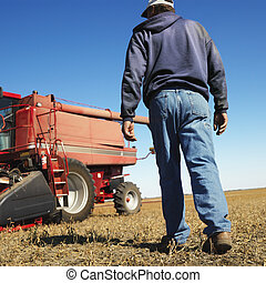 Farmer walking toward combine - Low angle back view of...