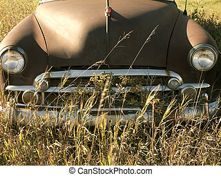 Antique car in field.