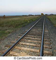 Railroad tracks. - Low angle diminishing view of railroad...