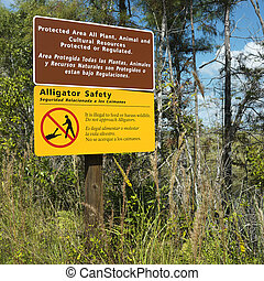 Sign in Florida Everglades. - Alligator safety sign in...