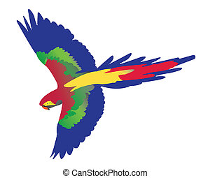 parrot flying on white background
