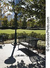 Empty bench in urban park.