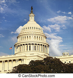 Capitol Building, Washington DC. - Capitol Building in...