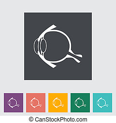 Anatomy eye - Anatomy eye flat icon Vector illustration