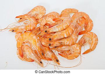 fresco, camarão, isolado, branca, fundo