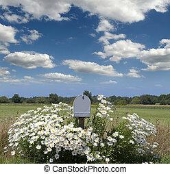 campo, flores, buzón