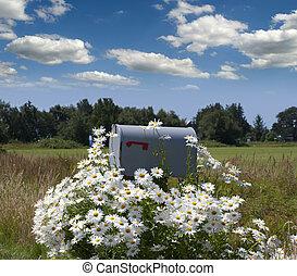 buzón, flores, campo