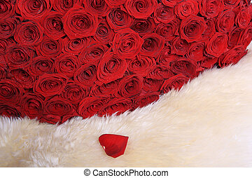red roses on white fur - set of red roses on white fur