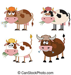Cows and bull cartoon, isolated.