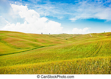 Beautiful view of scenic Tuscany landscape in Val d'Orcia, Italy