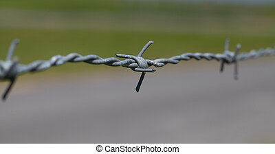 close-up of barbed wire - A close-up of barbed wire