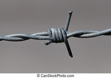 close-up of barbed wire - A close-up of barbed wire against...