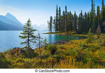 Summer landscape in Alberta, Canada - Beautiful landscape...