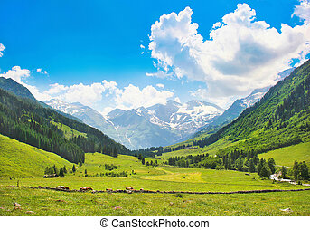 Landscape with Alps in Austria - Beautiful landscape with...