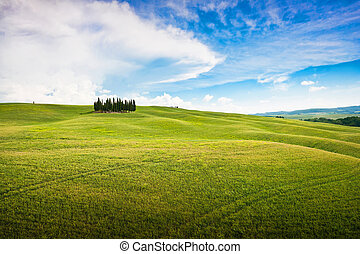 Panoramic view of scenic Tuscany landscape in Val d'Orcia,...