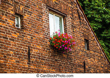 pink and red flowers in a flower box in front of a window of...