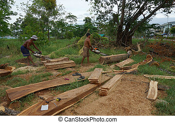 The Sawmilling used in industrial applications.