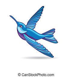 Blue hummingbird, vector illustration