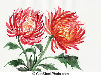 Chrysanthemum flower - Watercolor painting of Chrysanthemum....