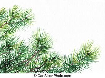 pino, árbol, ramas