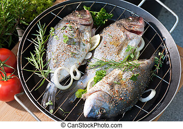 Grilled sea bream - three sea breams on roast prepared for...