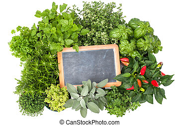 Fresh kitchen herbs with a board isolated on white