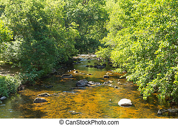River Teign Dartmoor Devon - River Teign Fingle Bridge...