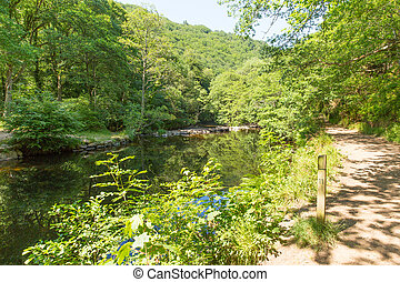 River Teign Fingle Bridge Dartmoor Devon National park...