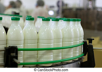 Dairy Plant Conveyor with milk bottles