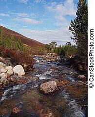 Cairngorms mountains, Gleann Laoigh Bheag, Luibeg river,...