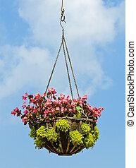 Flower hanging basket in blue sky