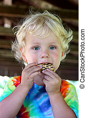 Little Child Eating Chocolate Cookie - a cute, curtly haired...