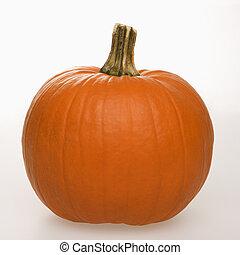 Pumpkin on white. - Still life of orange pumpkin against...