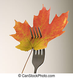 Maple leaf on fork. - Red and green Maple leaf pierced by a...