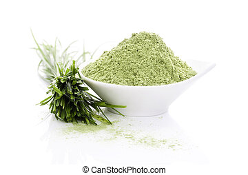 Barley grass. Superfood. - Wheatgrass blades and barley...