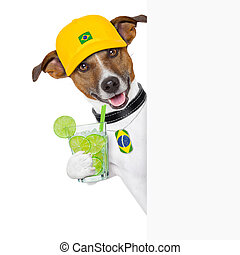 barzil dog - brazil samba dog with caipirinha, behind white...