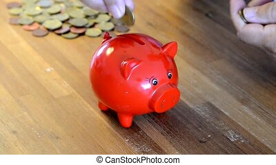 red money pig - filling money box