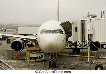 Jet at Foggy Airport - A jet waiting at the gate of a...