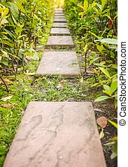 Natural walkway processed in warm tone - Natural stone with...