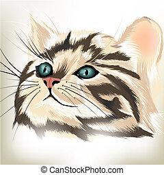 arte, vector, retrato, lindo, rayado, gato, grande, azul,...