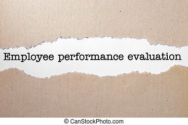 Employee performance evaluation