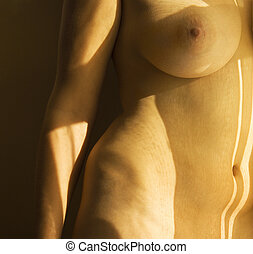Nude female body.