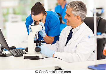 senior medical researcher helping junior lab technician in...